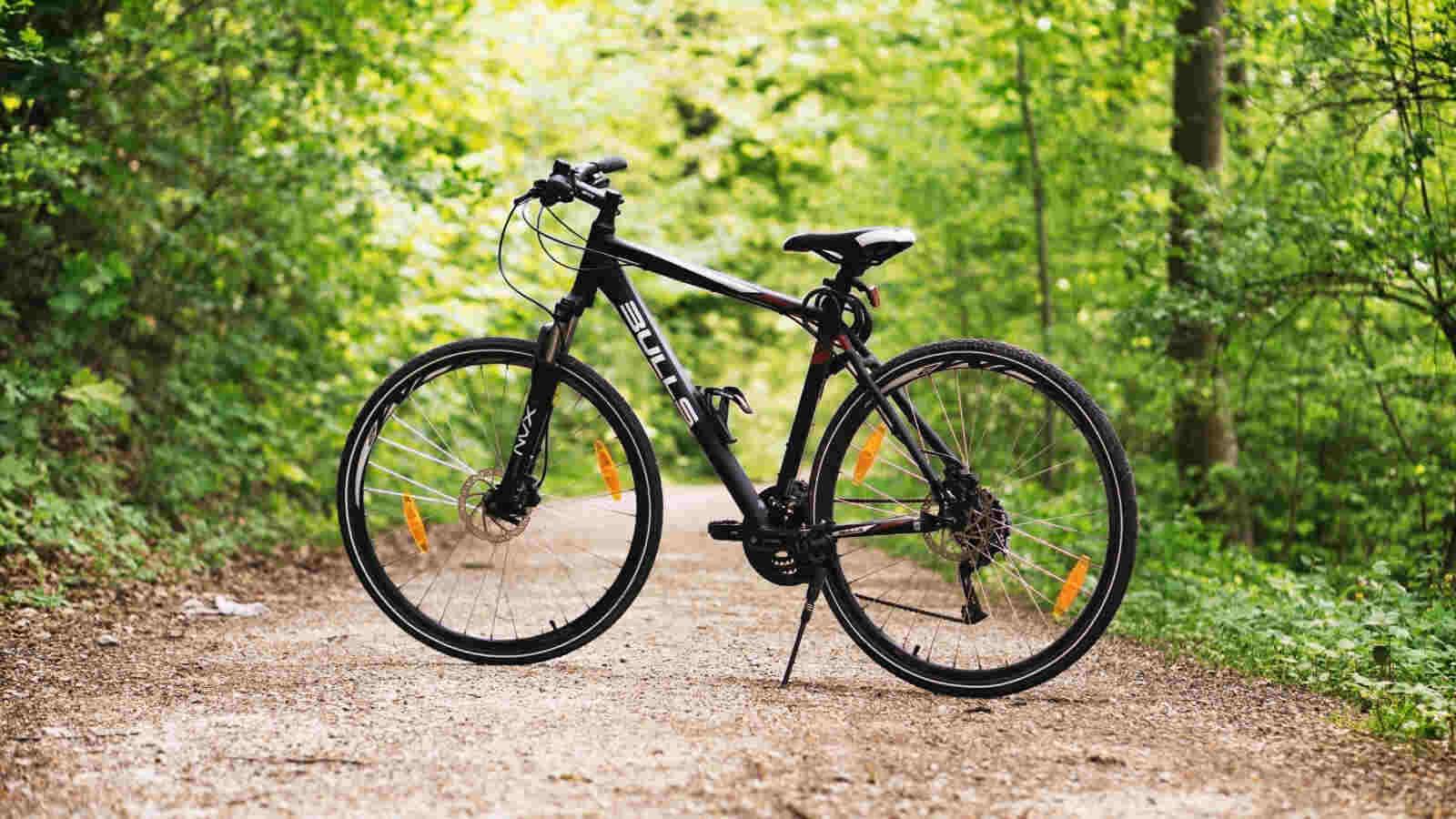 hybrid bike on a forest trail